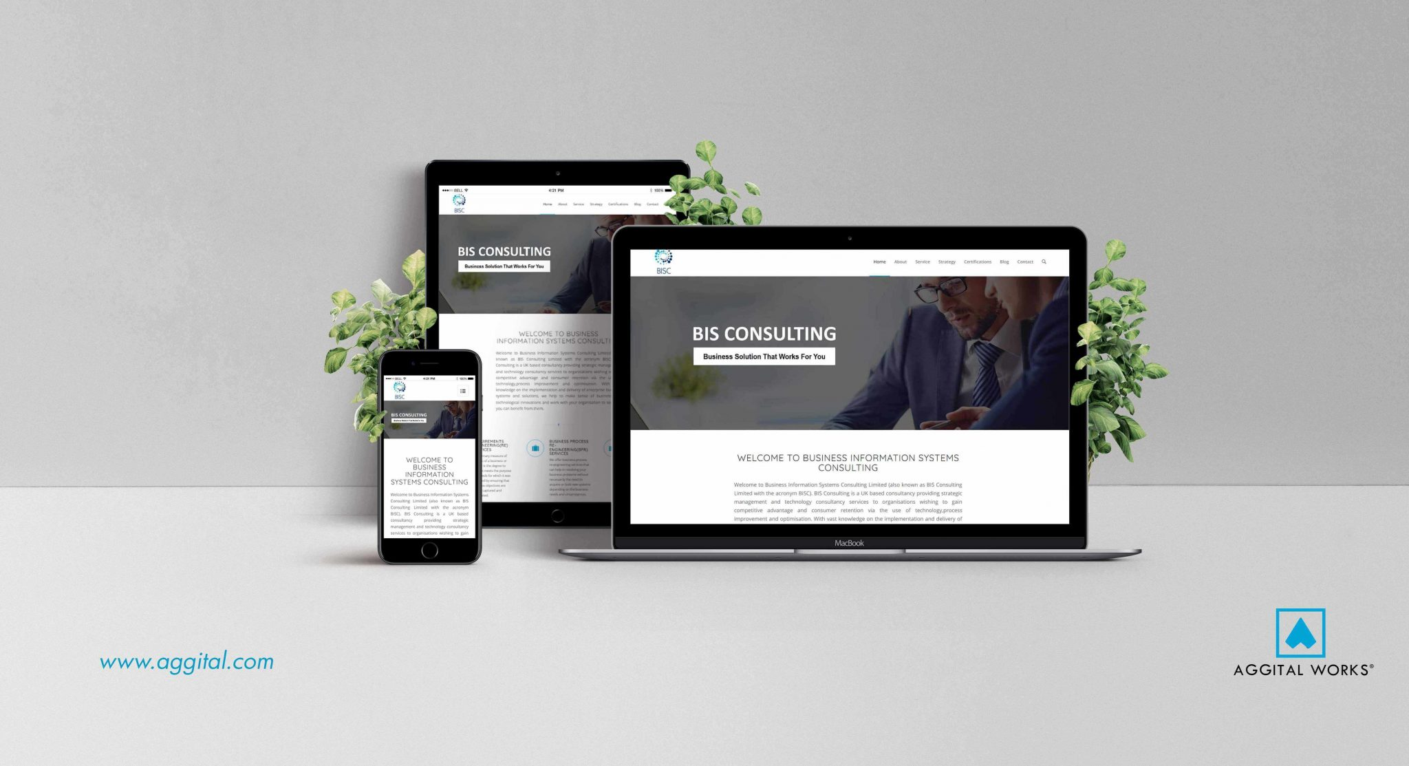 BIS Consulting Website Development